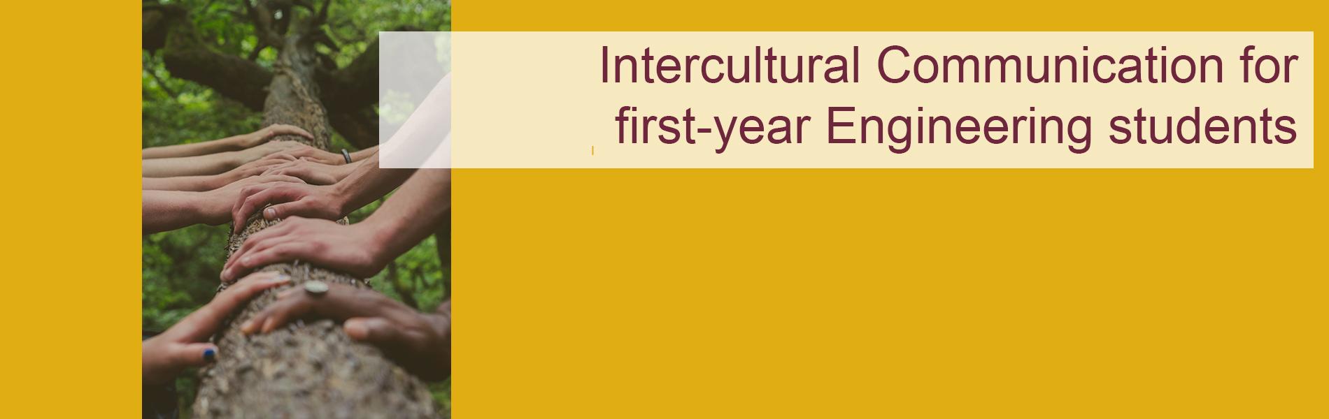 Intercultural Communication 113